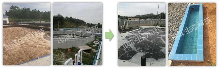 養殖污水處理